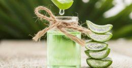 Aceite de Aloe Vera: Contraindicaciones, Propiedades y Beneficios
