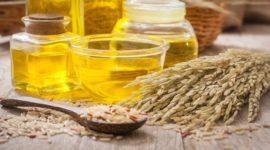 Aceite de Arroz: Contraindicaciones, Propiedades y Beneficios