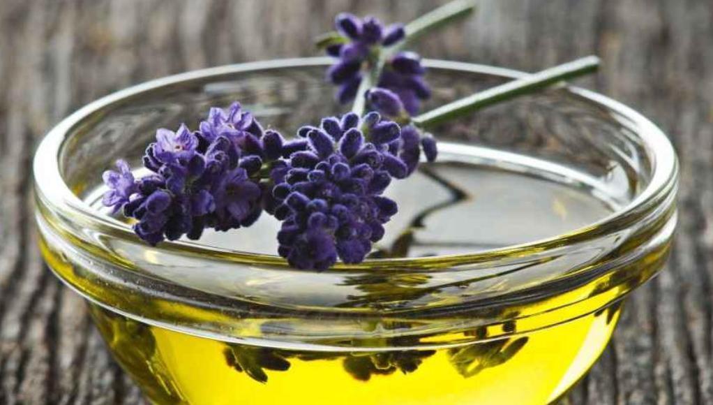 ¿Cómo hacer aceite de espliego casero?