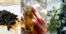 Aceite de Grosella Negra: Contraindicaciones, Propiedades y Beneficios