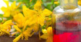 Aceite de Hipérico: Contraindicaciones, Propiedades y Beneficios