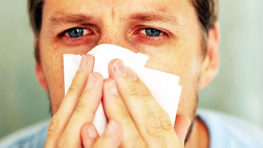 Kalanchoe y las alergias