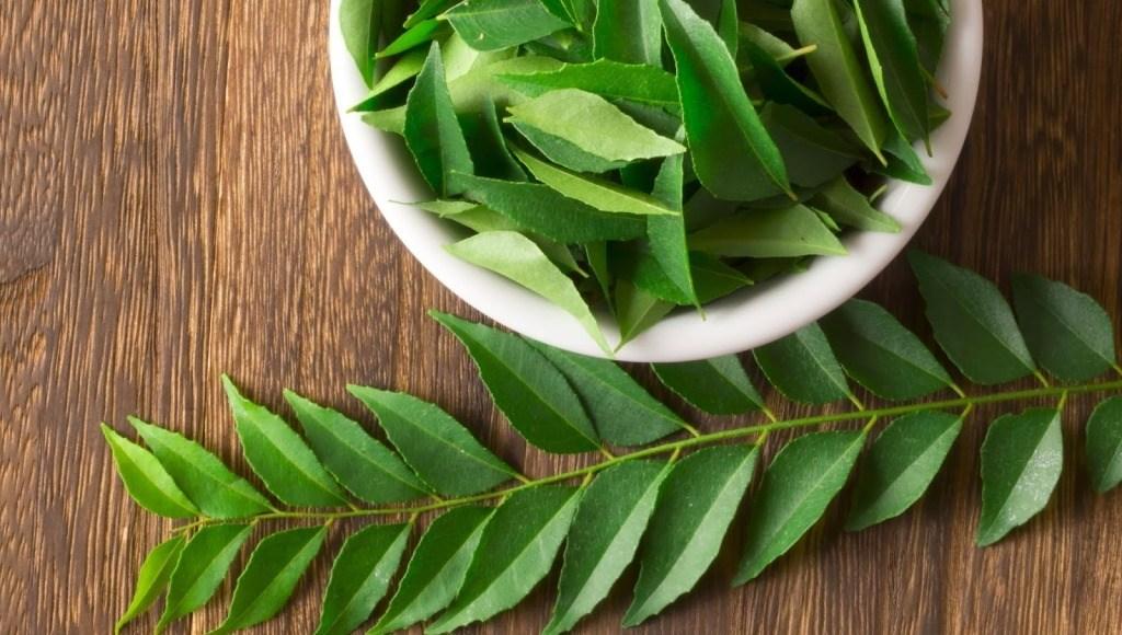 Usos medicinales del neem
