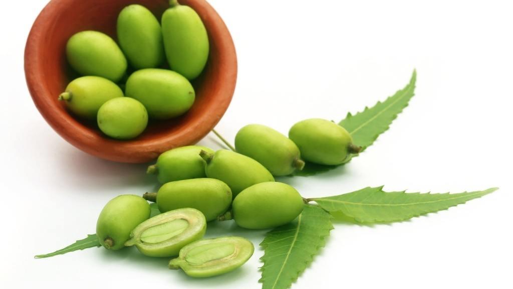 el te de neem sirve para bajar de peso