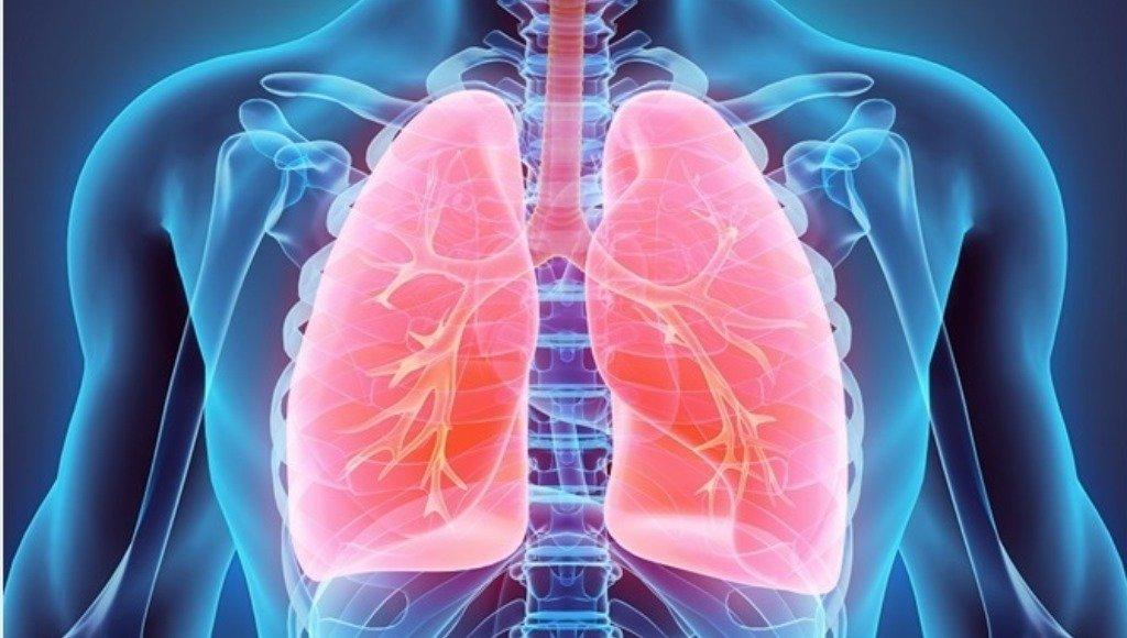 Para las vías respiratorias