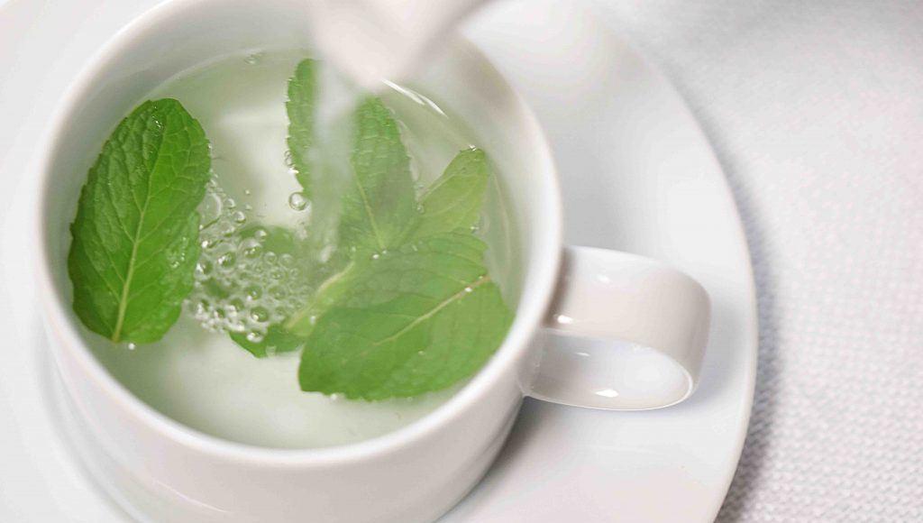 Características del té de menta