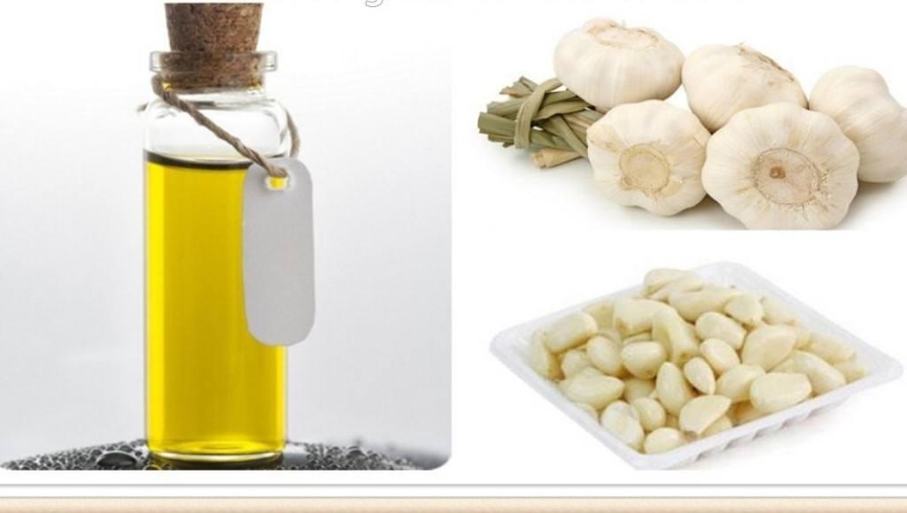 Características del aceite de ajo