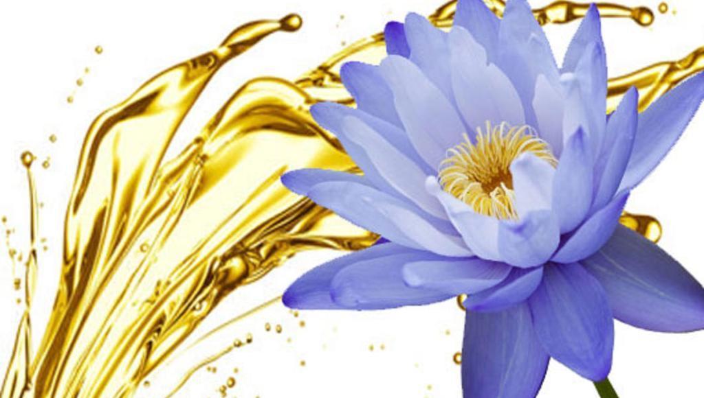 Características del aceite de flor de loto