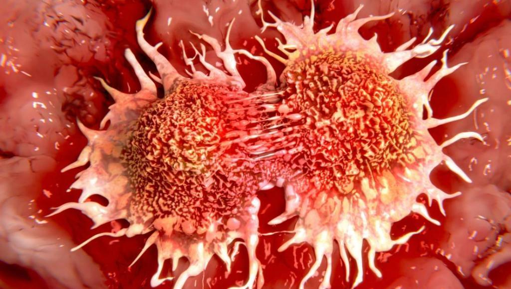 Aceite de gaulteria contra el cáncer