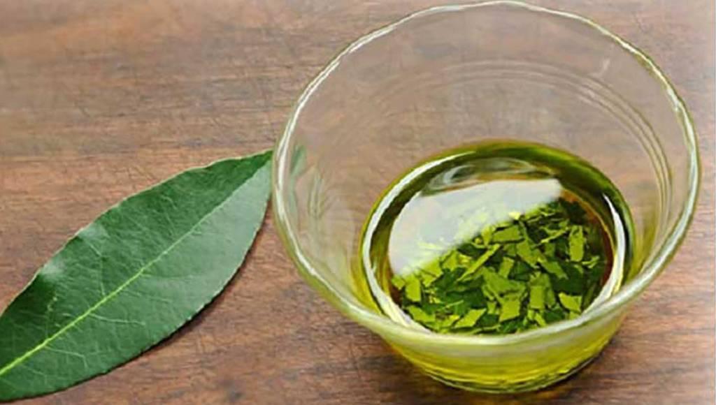 ¿Cómo hacer aceite de laurel casero?