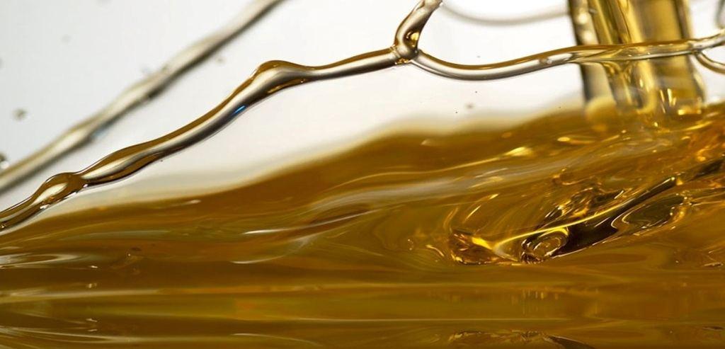 Características del aceite de neem