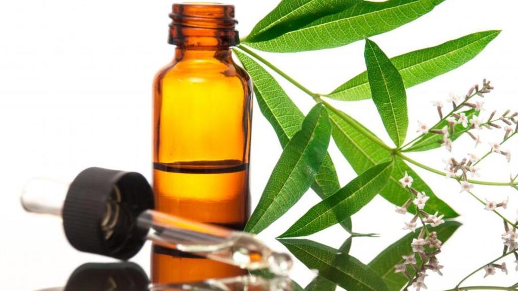 ¿Qué es el aceite de Verbena?