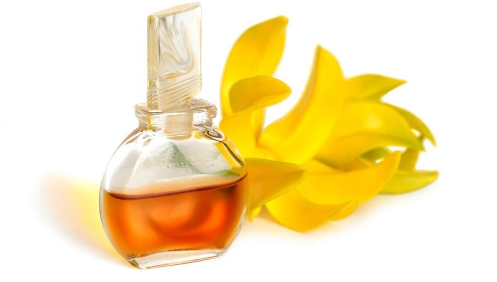 Características del aceite de ylang ylang