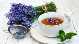 Té de lavanda: Contraindicaciones, Beneficios y Usos