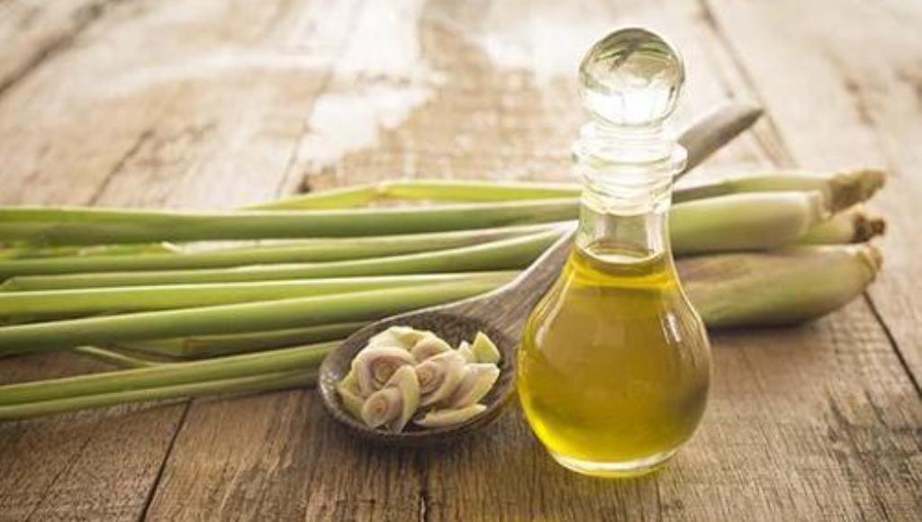 Beneficios y propiedades del aceite de citronela