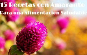 15 Recetas con Amaranto para una alimentación más saludable