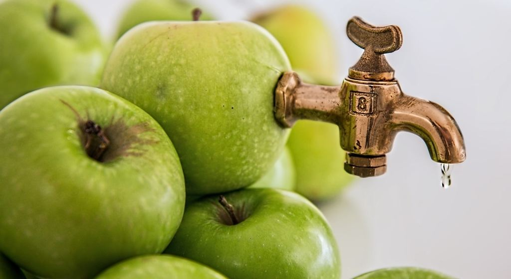 El zumo de frutas naturales