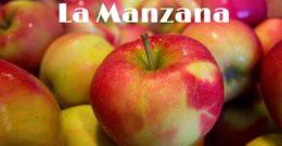Manzana: Contraindicaciones, Efectos Secundarios, Propiedades, Beneficios, Usos y Tipos