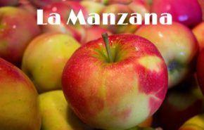 Manzana: Propiedades, Beneficios, Usos y Tipos