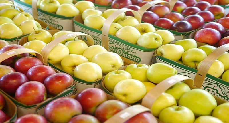 Principales tipos o variedades de manzana