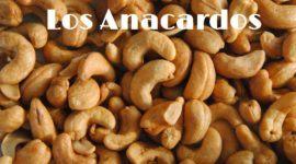 Anacardos: Contraindicaciones, Efectos secundarios, Alergias, Beneficios y Recetas