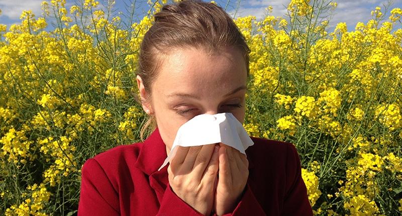 Alergias a los anacardos