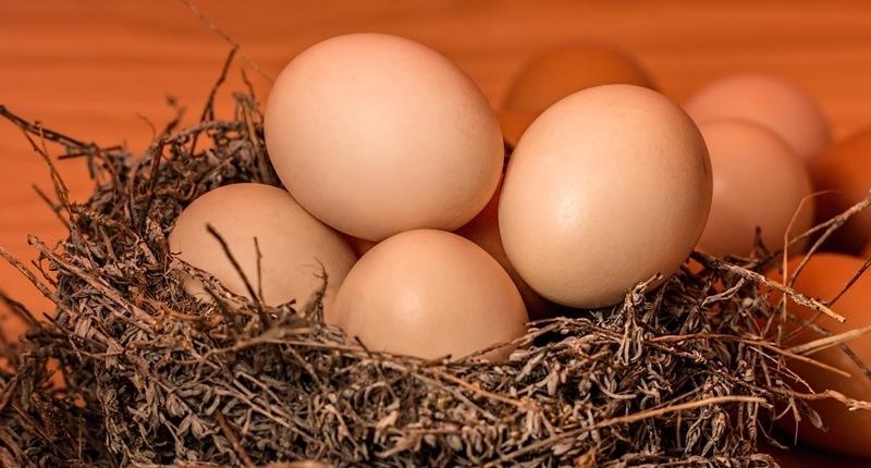 Consumir huevos aporta calcio