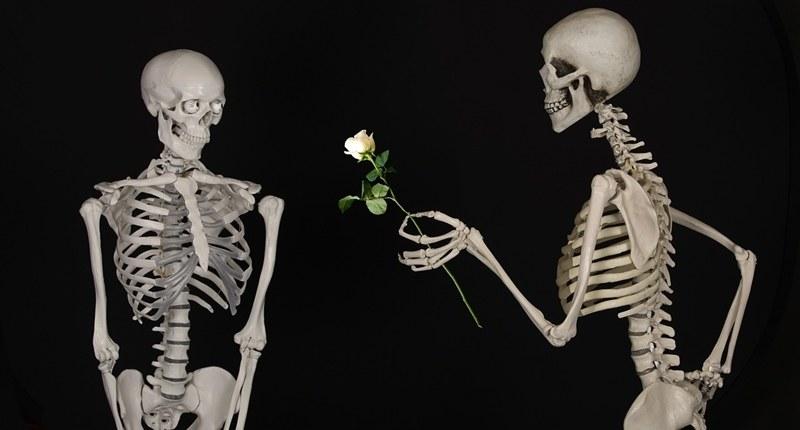 Leche para prevenir osteoporosis