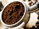 Café: Contraindicaciones, Beneficios, Usos, Propiedades y Efectos Metabólicos