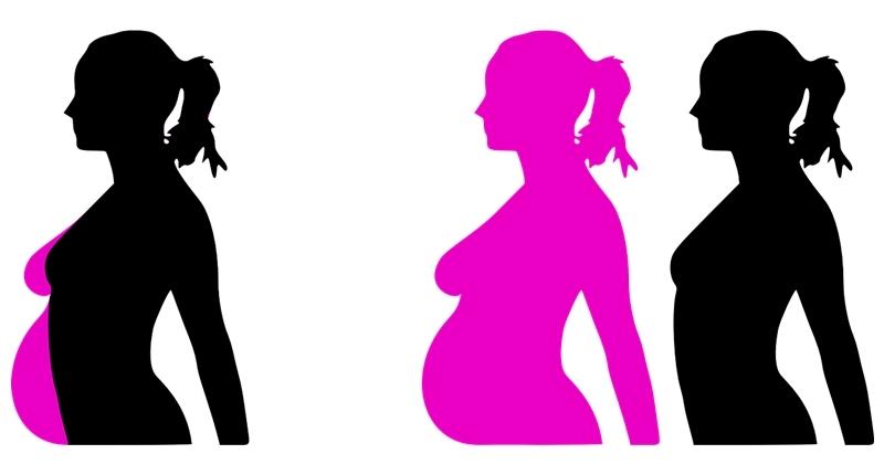 Cuerpo femenino antes, durante y después del embarazo