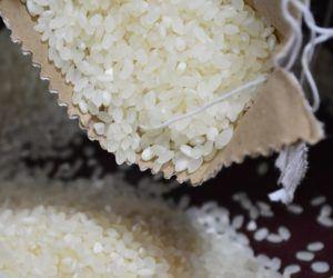Todo sobre los tipos de arroz
