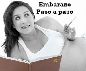 Guía Completa del Embarazo Paso a Paso