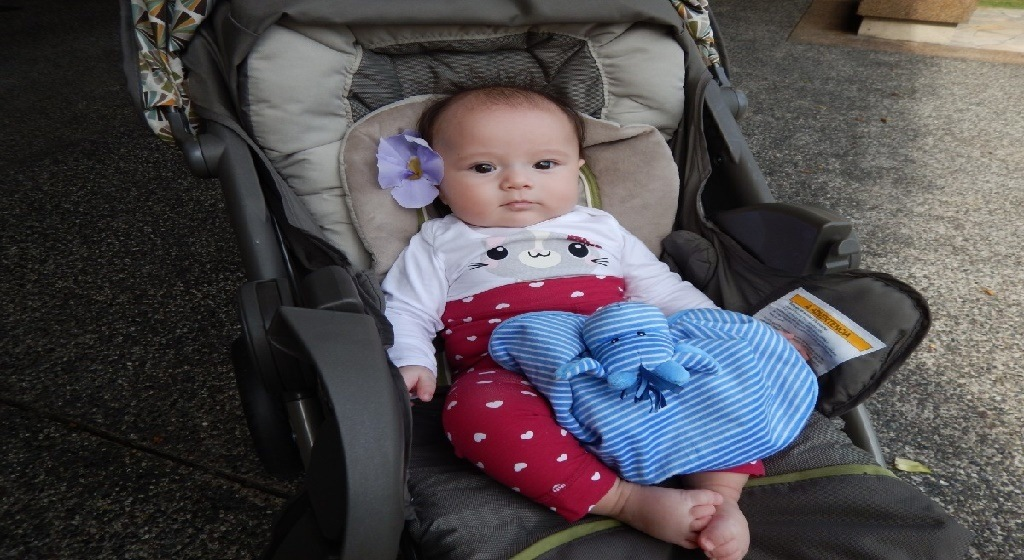 Mejores hamacas de bebés