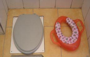 Mejores reductores inodoros / WC