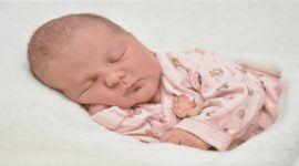 Mejores Toquillas y Arrullos para Bebés