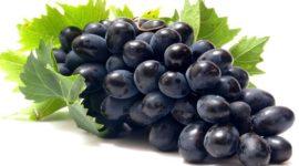 Uva Negra: Contraindicaciones, Beneficios y Recetas