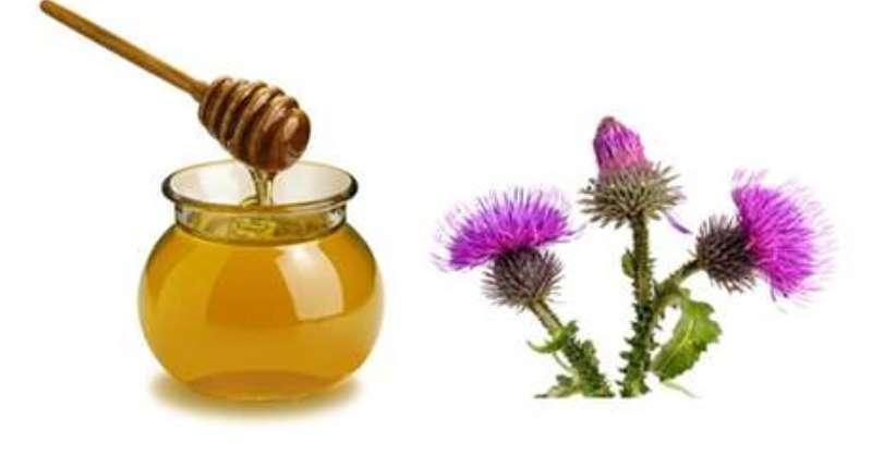 infusion de bardana y miel para el cabello