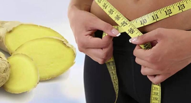 jengibre para perder peso