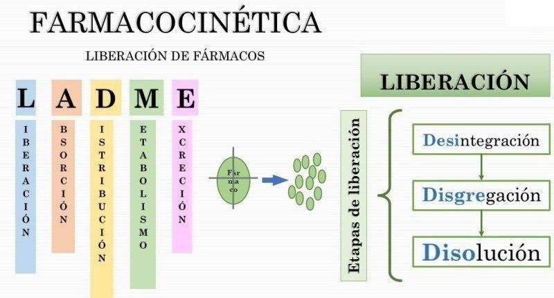 farmacocinetica del isoface