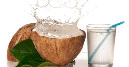Agua de Coco para Adelgazar: Contraindicaciones, Receta y Razones para beberla