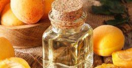 Aceite de Albaricoque: Contraindicaciones, Beneficios y Propiedades