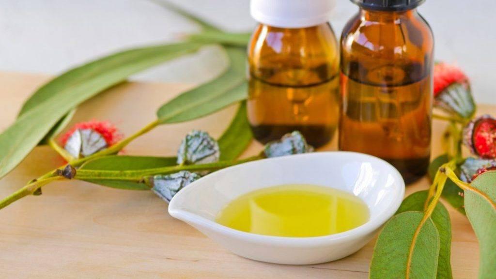 Uso de Aceite de eucalipto