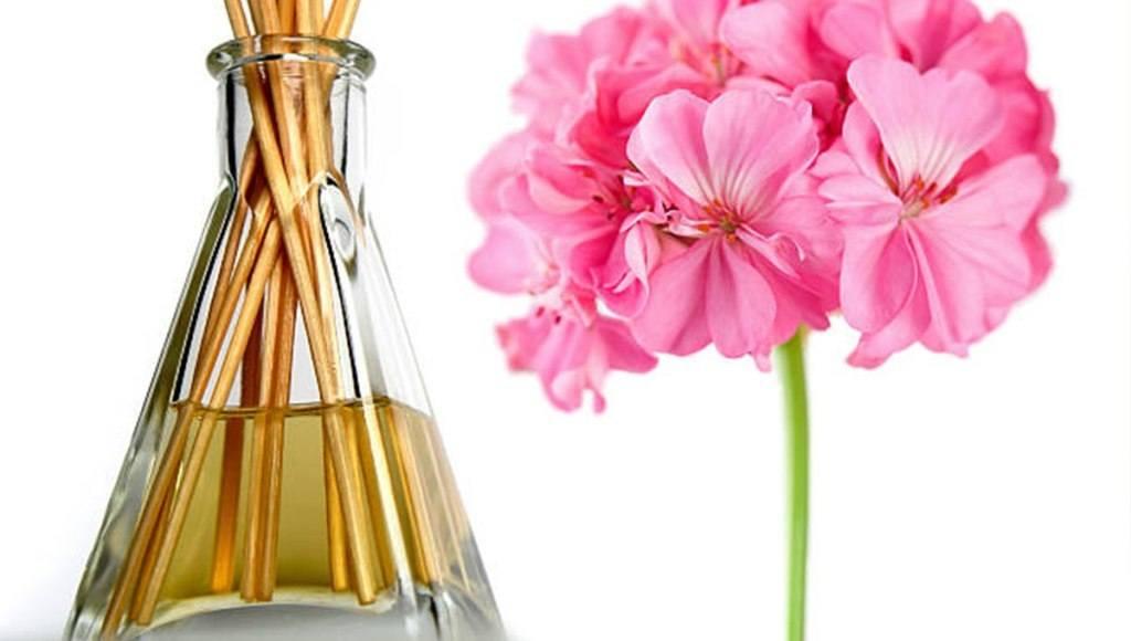 Caracteristicas del aceite de geranio