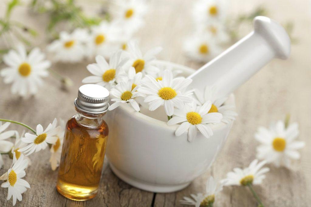¿Cómo hacer aceite de manzanilla casero?
