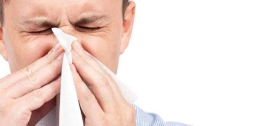 Propiedades terapéuticas del aceite de menta