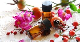Aceite de Rosa Mosqueta: Contraindicaciones, Propiedades y Beneficios