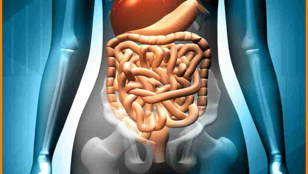 ¿Cómo se usa la arcilla blanca para el sistema digestivo?