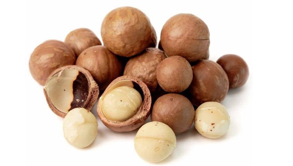 Propiedades medicinales y terapéuticas de las nueces de macadamia