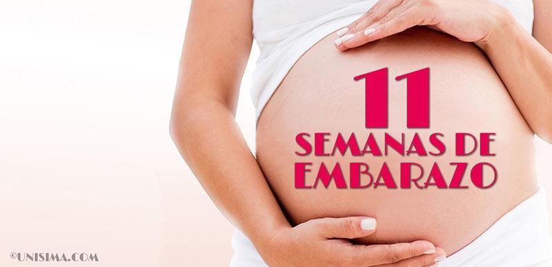 11 semanas de embarazo