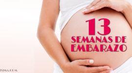 13 Semanas de Embarazo – Gestación Completa paso a paso